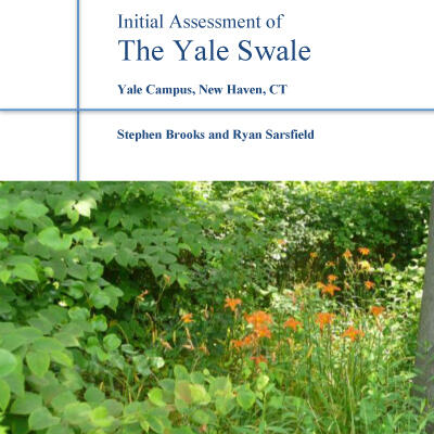 Swale assessment report